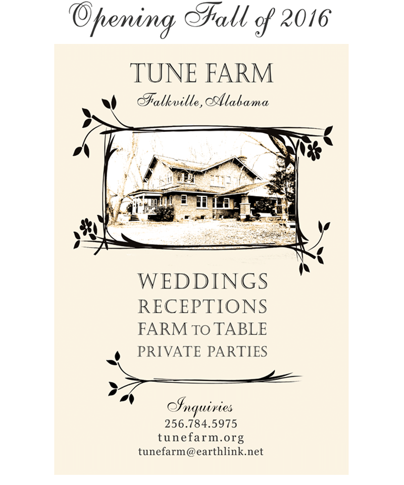 Alabama Farm Wedding Rustic Chic Event Venue